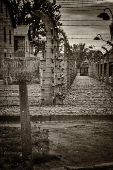 Auschwitz -5-
