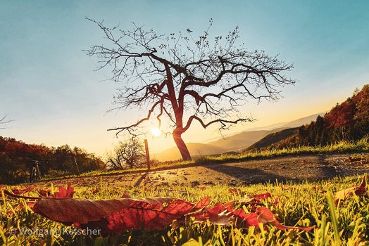 Herbst auf der Grazer Platte