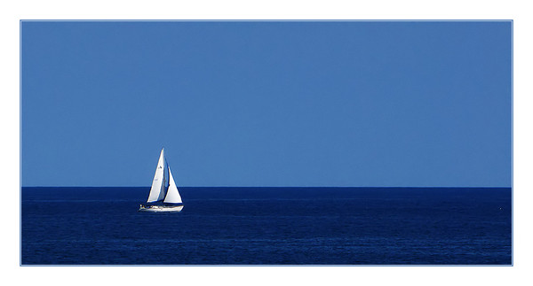NEW WIND IN THE SAILS