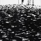 Ödland, 1955