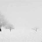 Winternebl