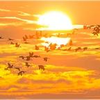 Durch die Sonne...