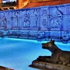 Fonte Gaia - Siena / Toskana / Italien (2)