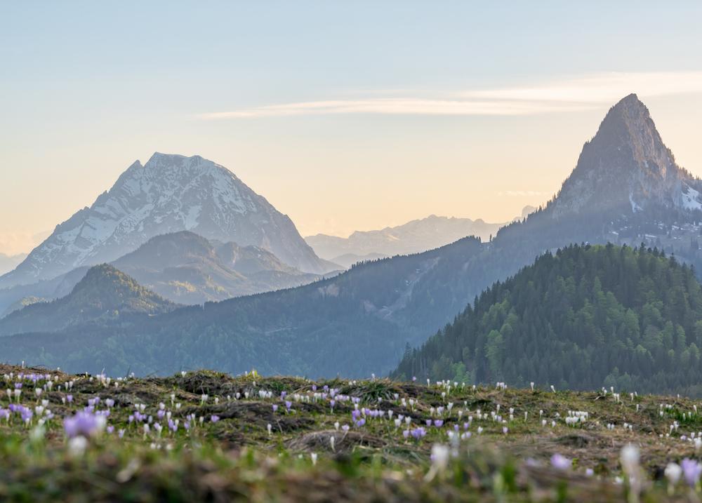 Hinteregger Alm im Frühling mit Blick auf Grimming, Dachstein und Hochtausing