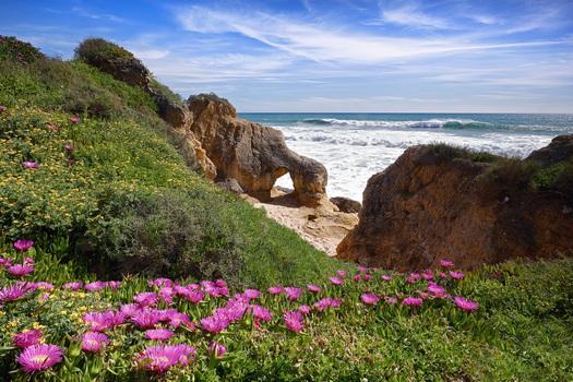 An der herrlichen Küste der Algarve