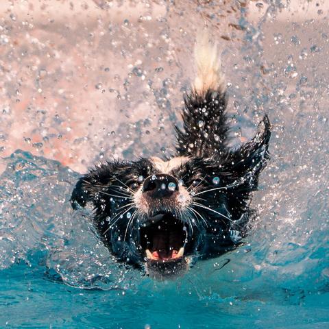 endlich Badewetter :-)