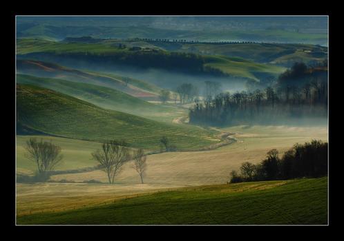 ~foggy morning~