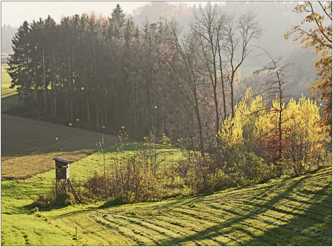 später Herbstnachmittag