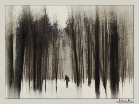Alone in the deep Winterforest