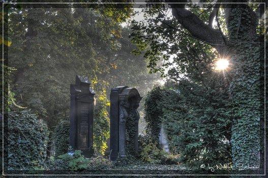 Es lebe der Zentralfriedhof.....