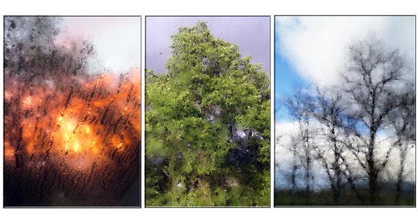Dachflächenfenster Trilogie