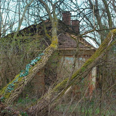 Häuschen im Grünen