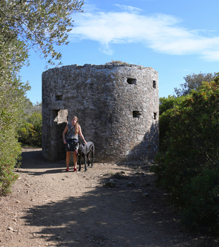 Etruskischer Signalturm, Populonia
