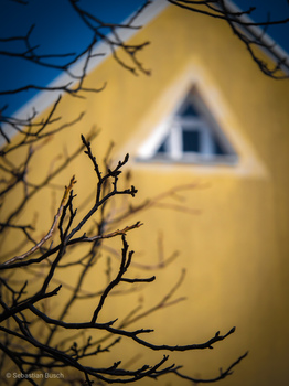 Frühlingspyramide im Dachspitz