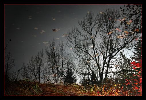 Ein düsterer Herbsttag ...