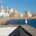 Cadiz am Strand