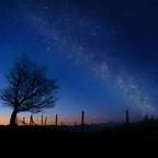 Sonne Baum und Sterne