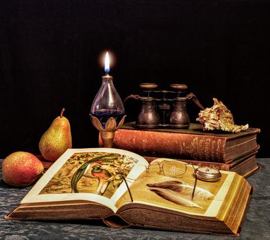 Stillleben mit Büchern