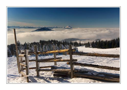 Nebel und der Ötscher