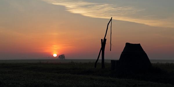 Sonnenaufgang im Seewinkel