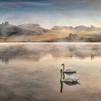 Morning at Pernica lake