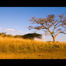 Afrika #12 Sunset