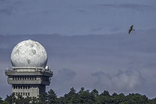 Raubvogel mit der Radarkuppel auf den Leiser Bergen