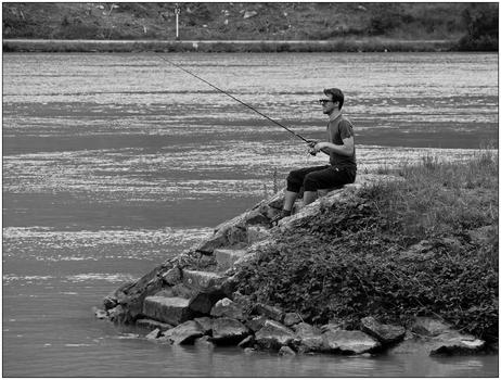 Donaufischer