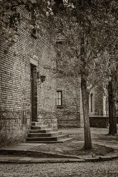 Auschwitz -6-