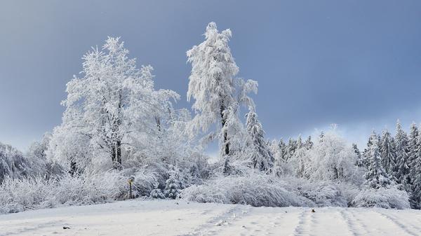 Winter im Waldviertel 4