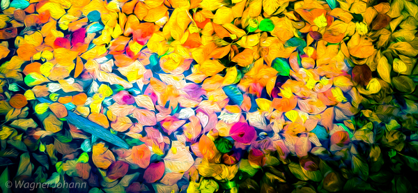 Herbstblätter, expressionistisch