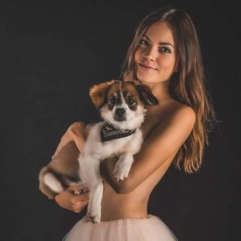 Ist der Hund nicht süß?