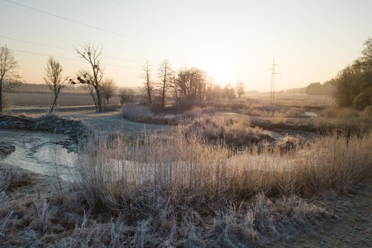 Morgenfrost