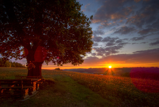 Sunrise 6:43