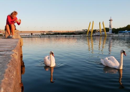 Donauinselidylle