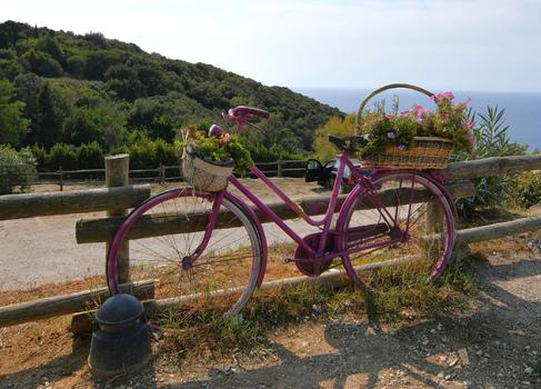 Blumengruß auf Rad
