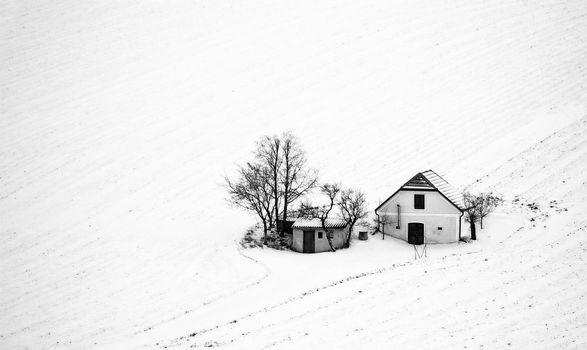 Winterstimmung im Keller