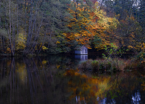 Herbst am Huckinger See