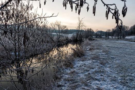 Wintermorgen am Bach