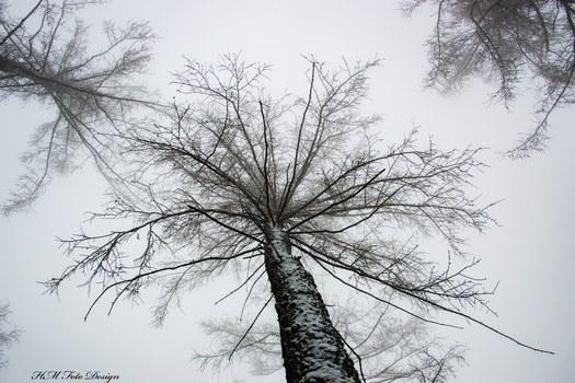 Der Winter naht
