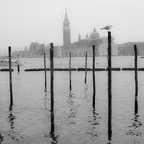wieder einmal Venedig