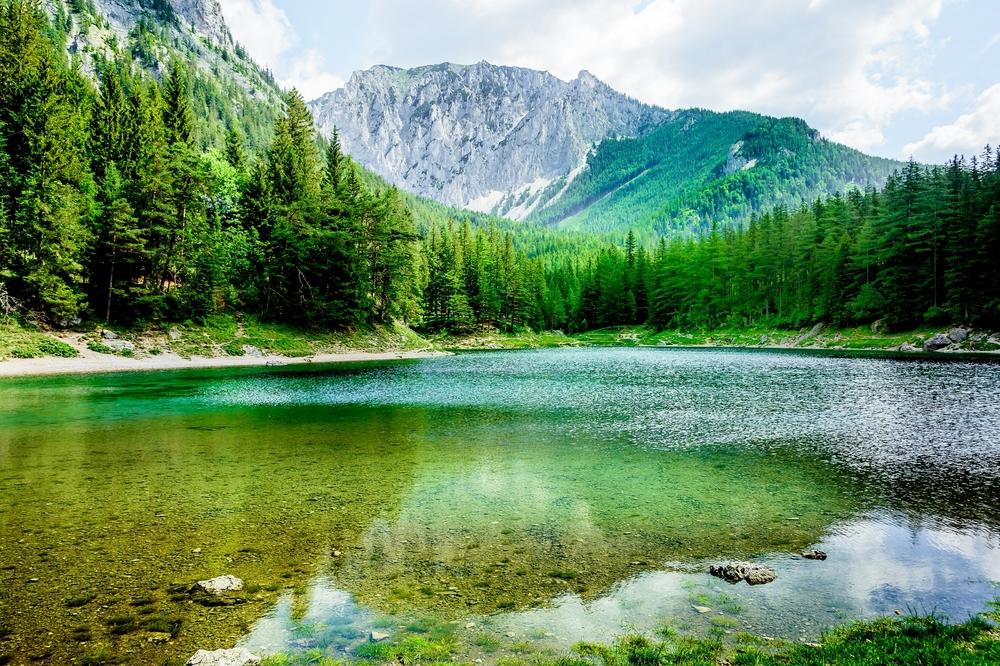 Abkühlung am grünen See...