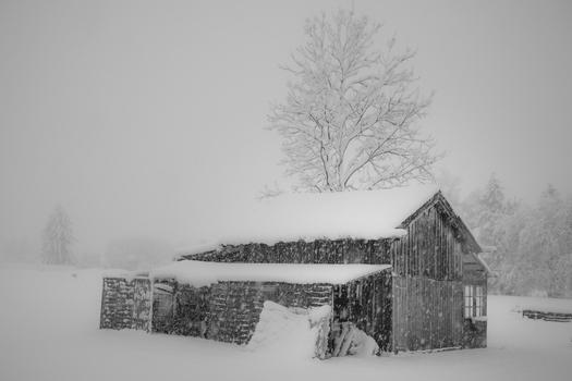 Wintereinbruch Jänner 2021