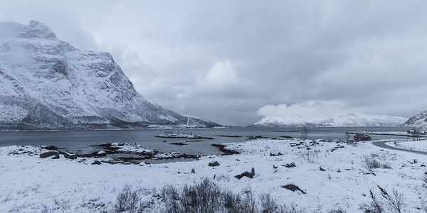 Fjordlandschaft 3