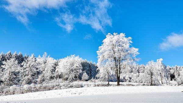 Winter im Waldviertel (letzte Aufn.)