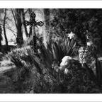FriedhofDerNamenlosen(4)