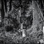 FriedhofDerNamenlosen(11)