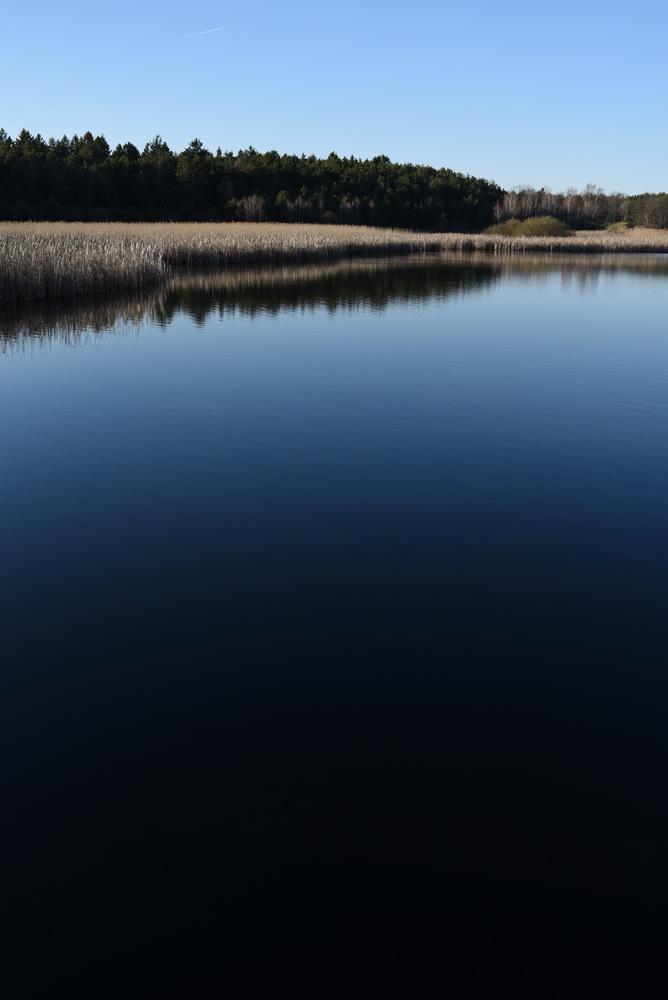 Teichspaziergang 5