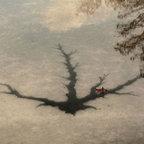 Baum mit ein Blatt