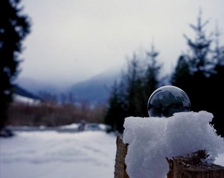 Schönheit der Kälte